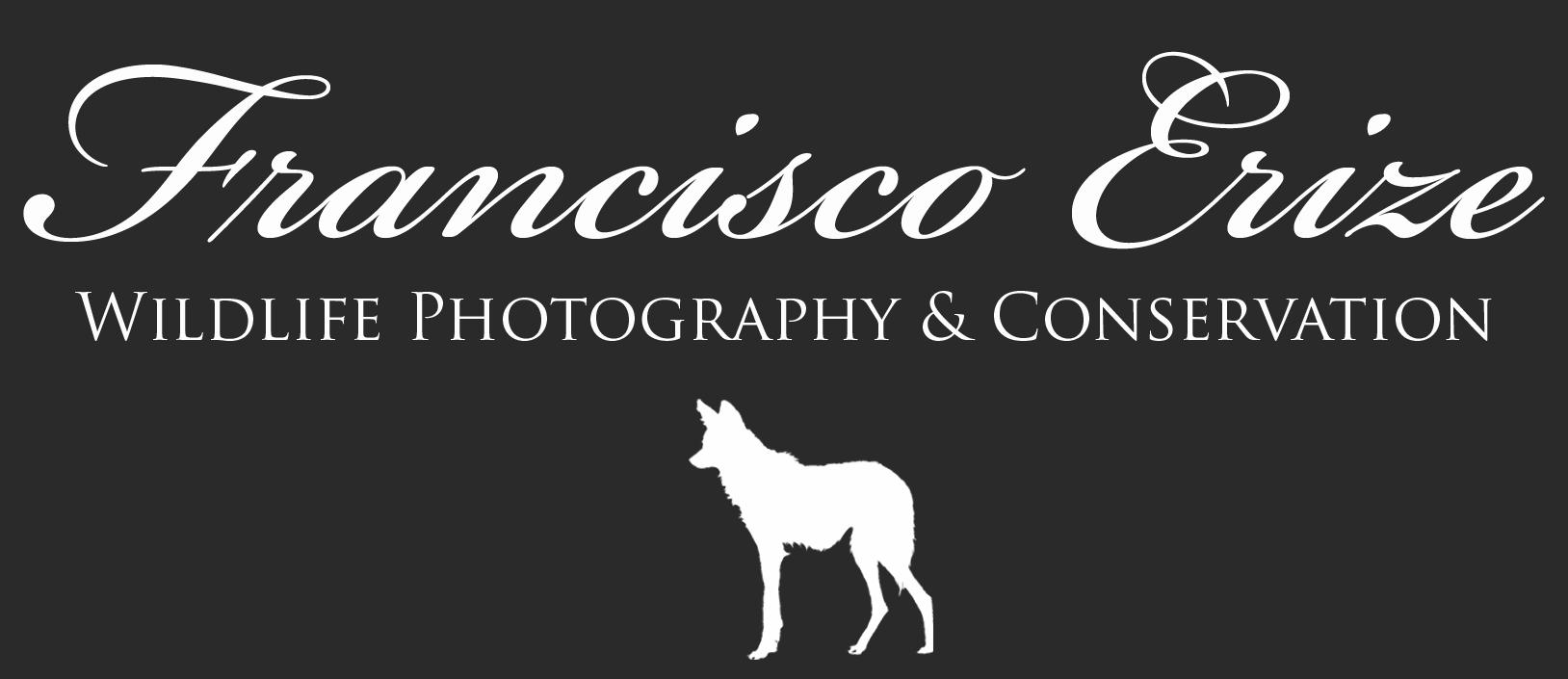Francisco Erize Wildlife Photography & Conservation