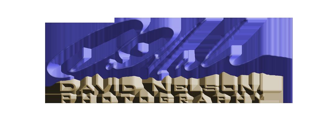 David Nelson Photography