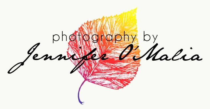 Photography by Jennifer O'Malia