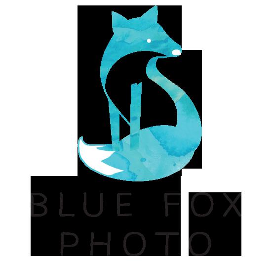 Blue Fox Photo