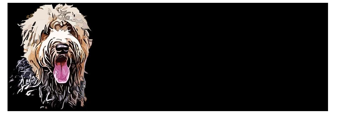 BeMoreDogPhotography