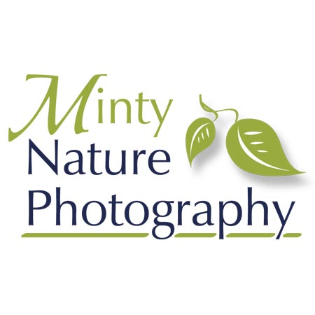 Minty Nature Photography