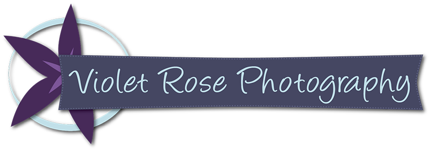 Violet Rose Photography