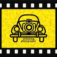 Yellow Bug Photography