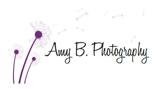 Amy B Photography