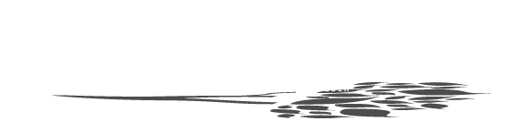 Edward Michael Lach