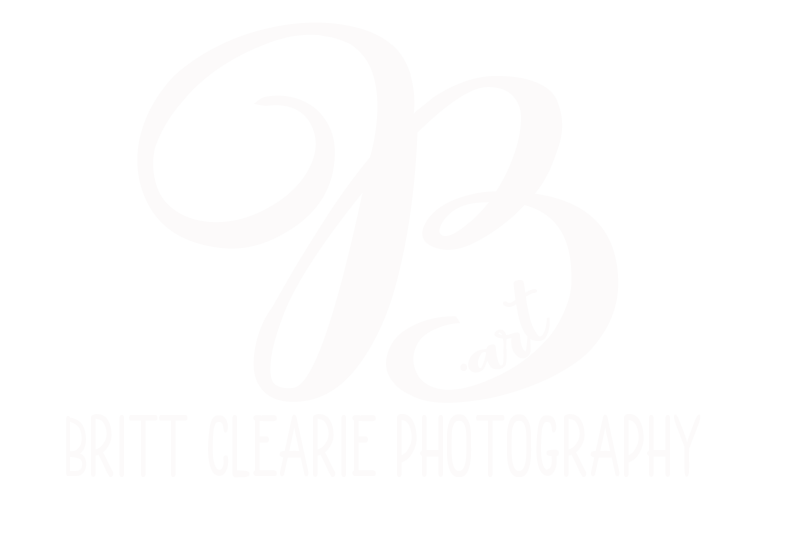 B-Art Britt Clearie Photography and Videography, Inc