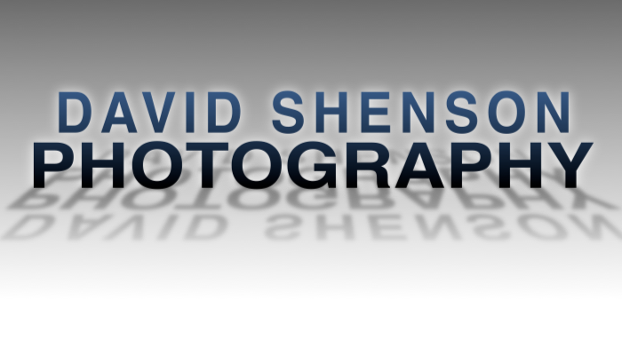 David L. Shenson Photography