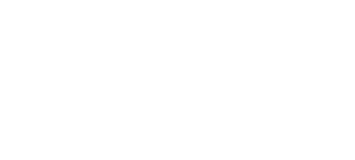 Andrew Levine Photography