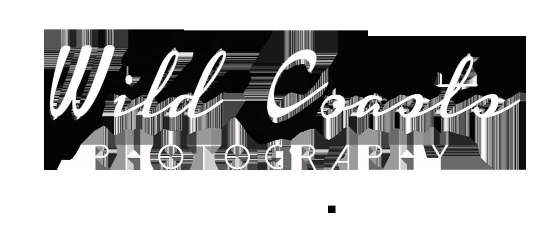 Wild Coasts Photography