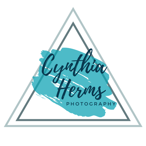 Cynthia Herms