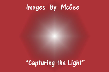 Images by McGee