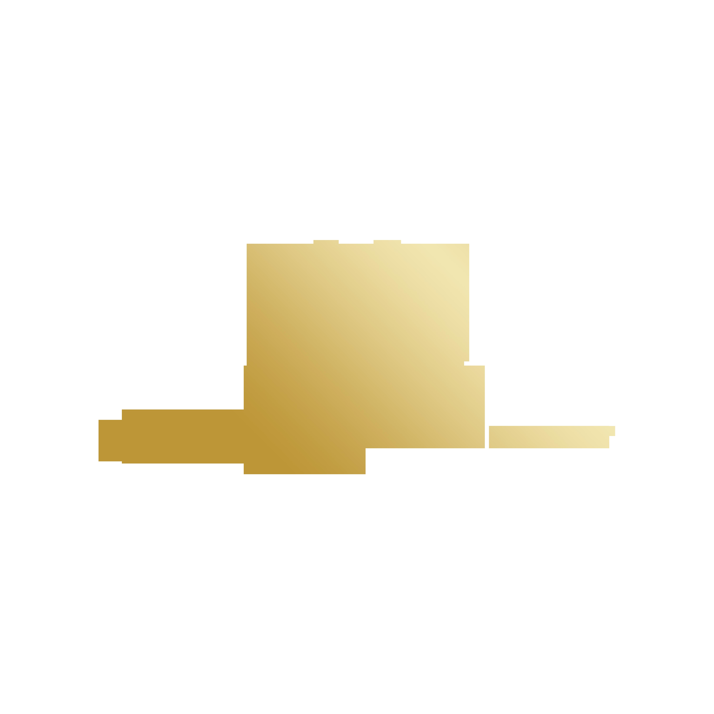 Chelsea Brinton Photography