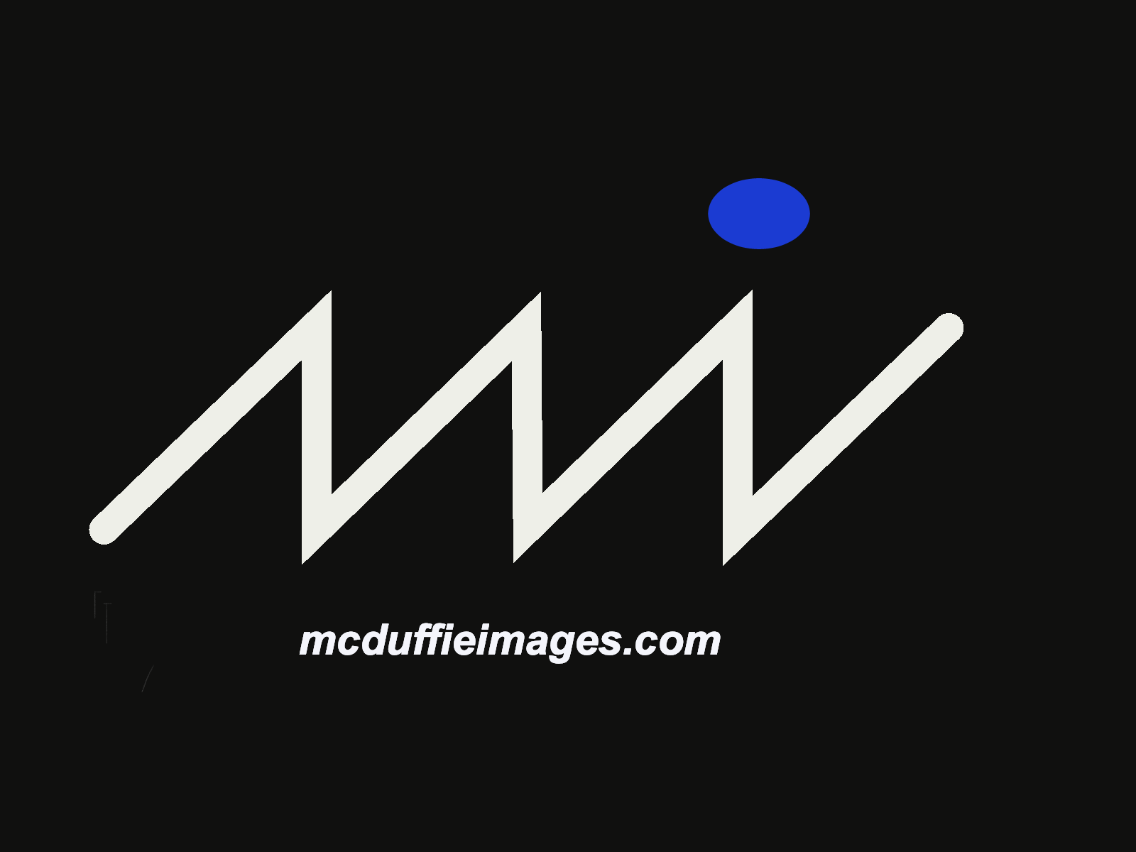 McDuffie Images, LLC