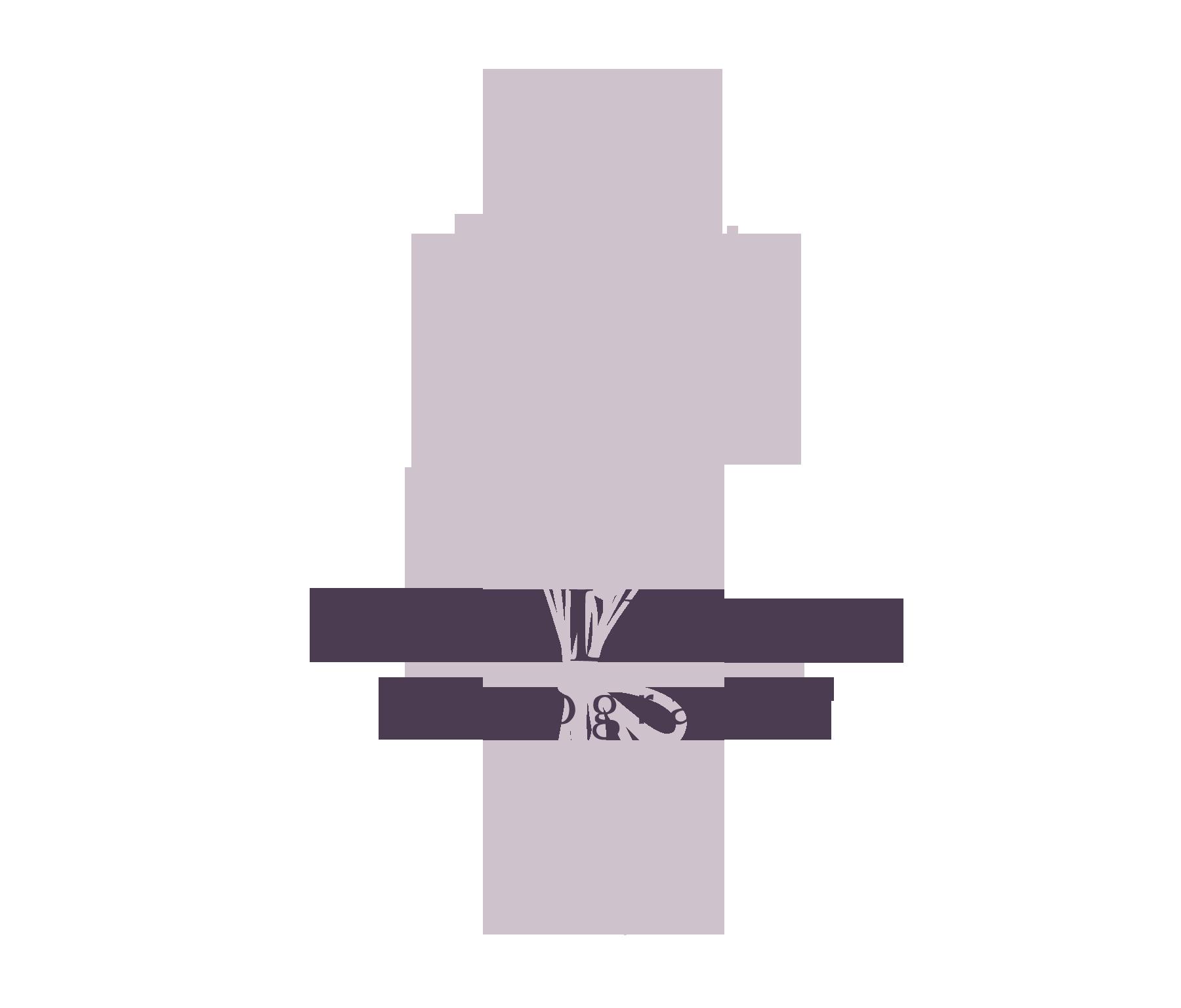 Sara LePage Photography