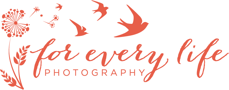 Wedding and Portrait Photography and Video in Atlanta GA For Every Life