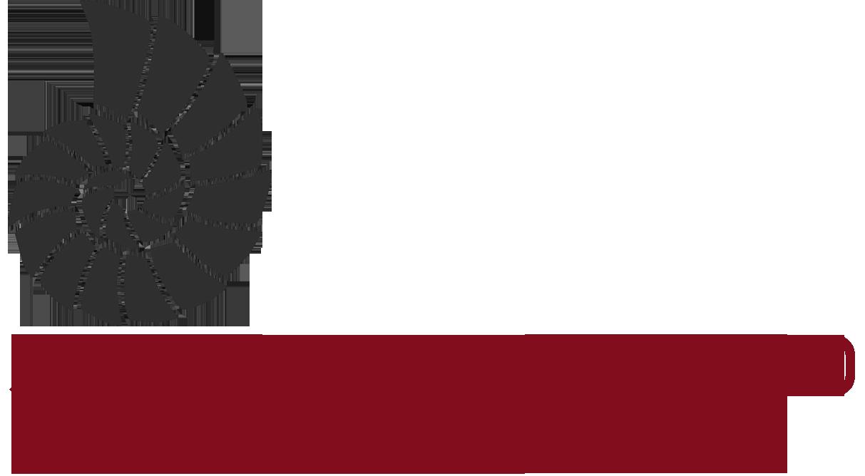 Joanne Drummond Photography