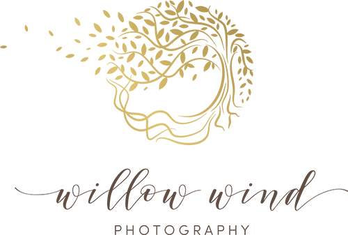 Willow Wind Photography