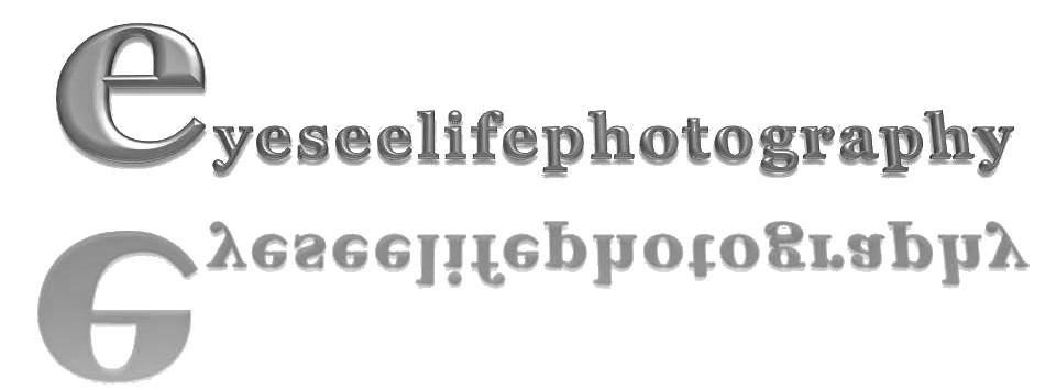 eyeseelifephotography
