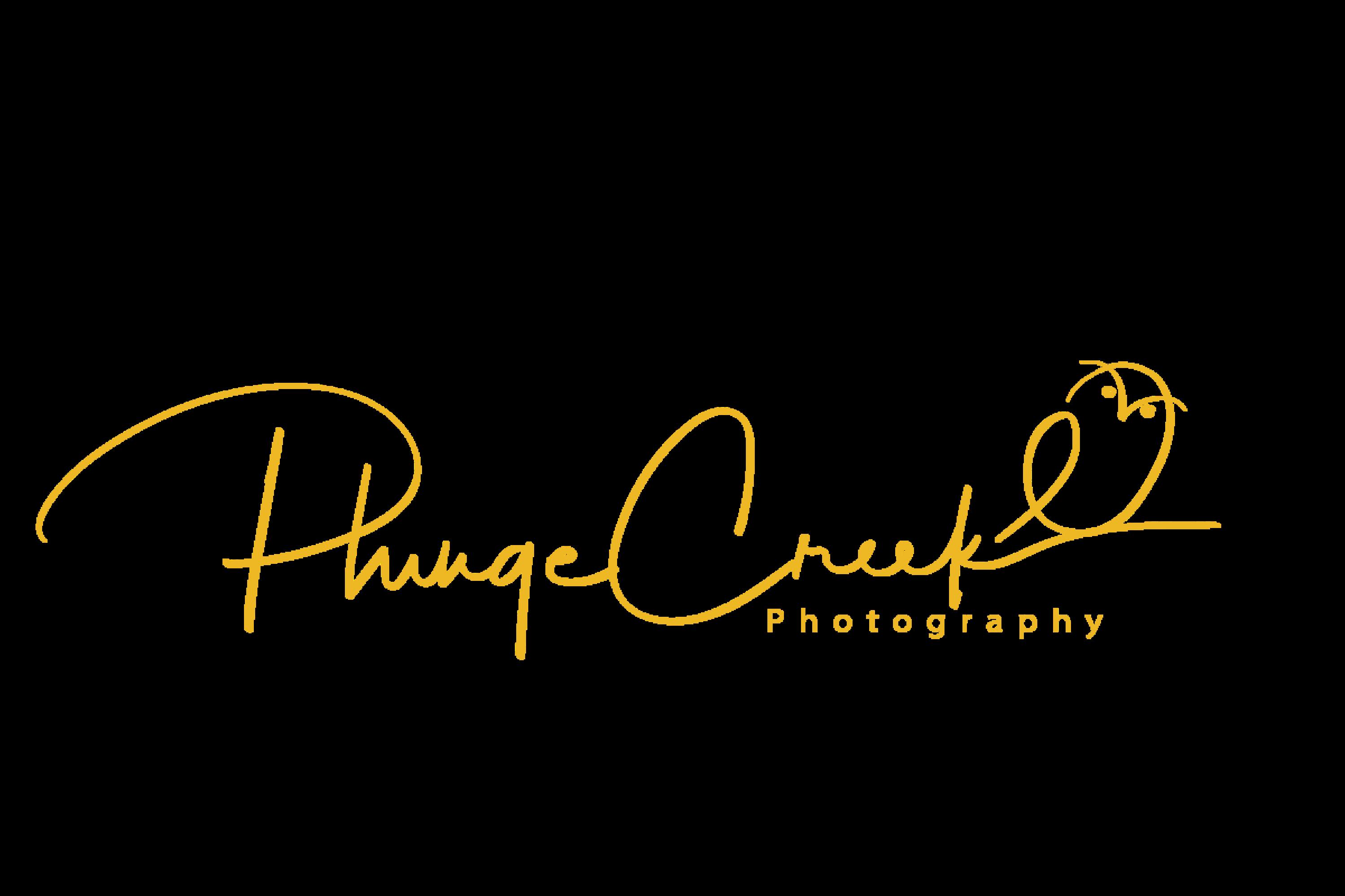 Plunge Creek Photography