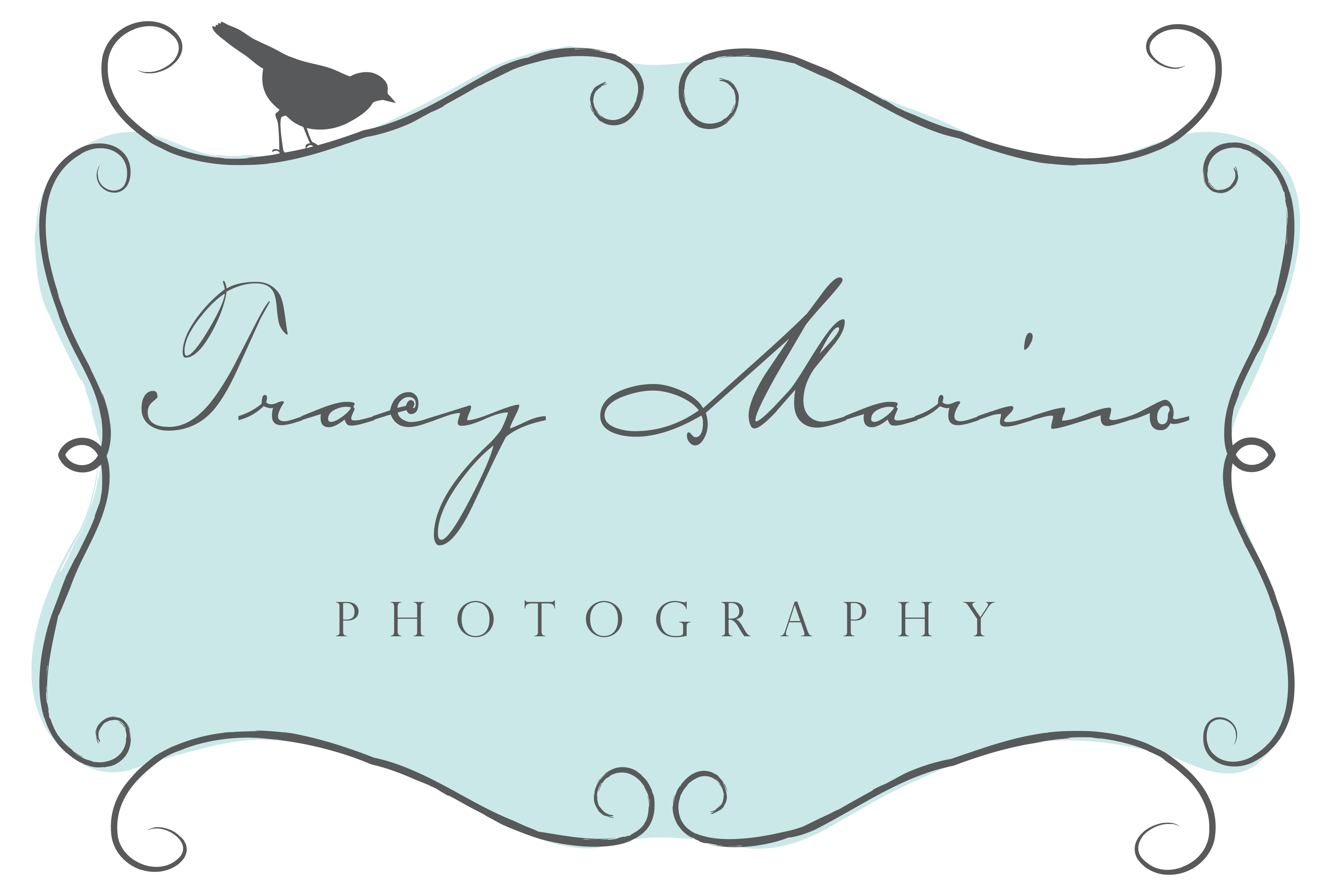 Tracy Marino Photography