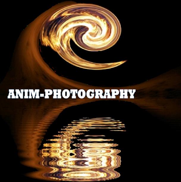 ANIM-Photography.com
