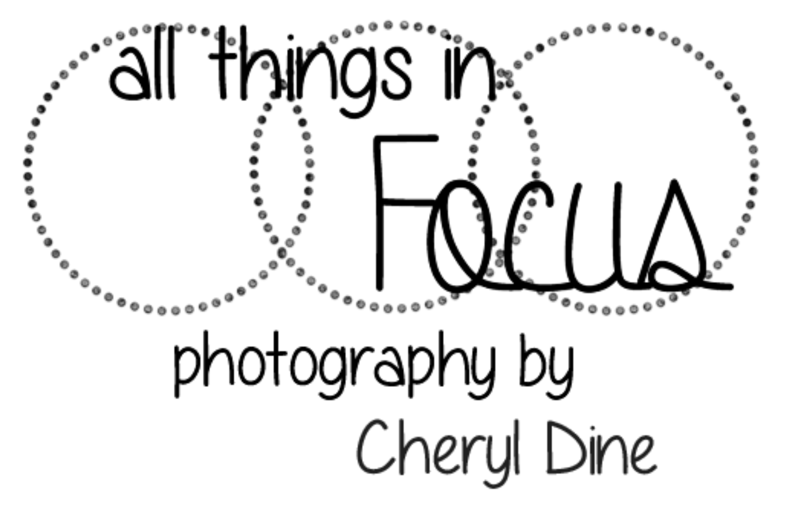 All Things in Focus: Cheryl Dine, Photographer; Bay City, MI