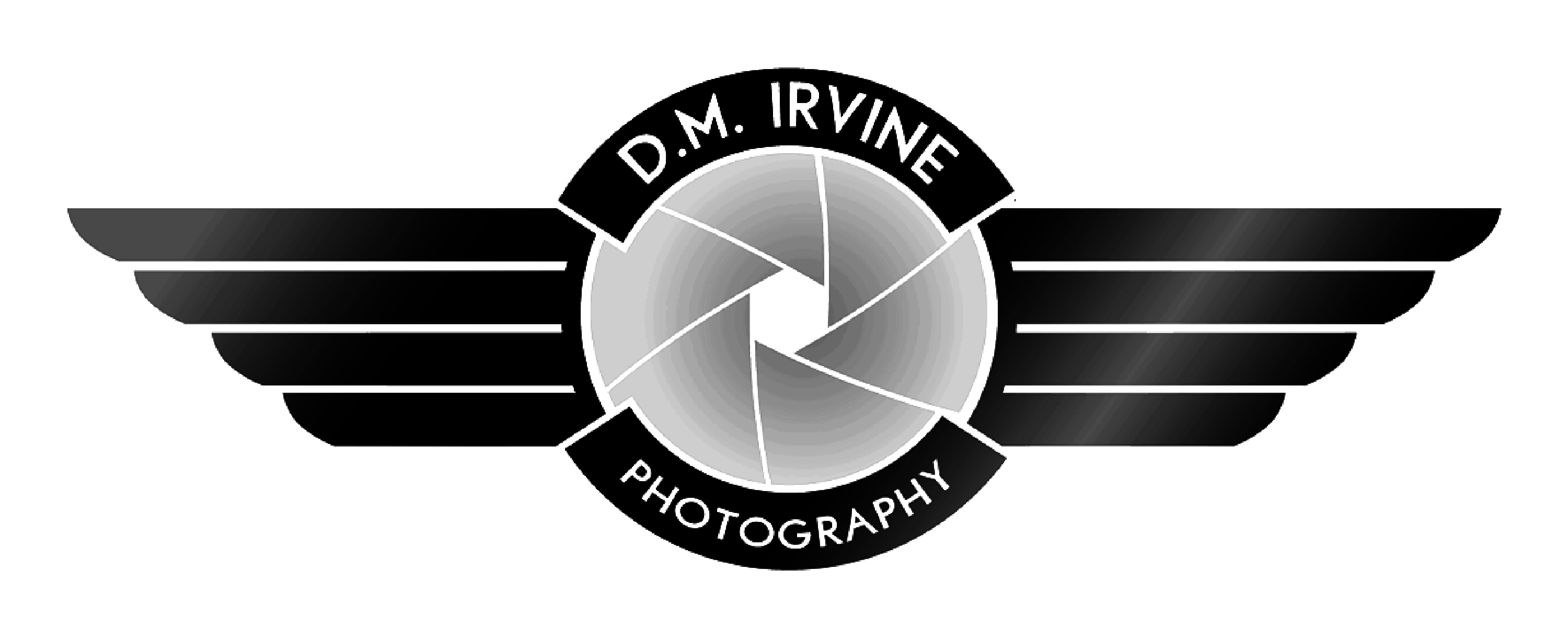 dmirvine photography