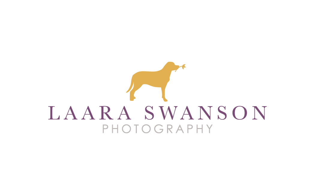 Laara Swanson Photography