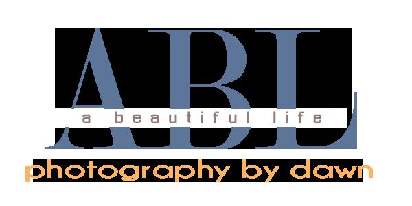 ABL Photography by Dawn