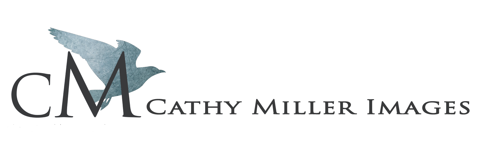 Cathy Miller Images