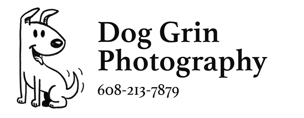Dog Grin Photography