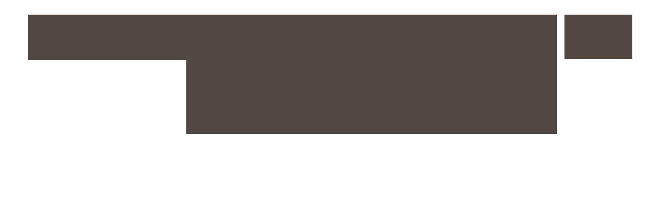 Alison Bocanegra Studios