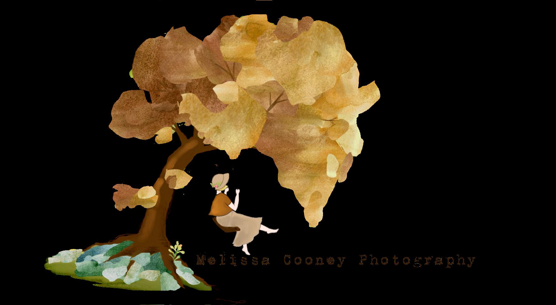 Melissa Cooney Photography
