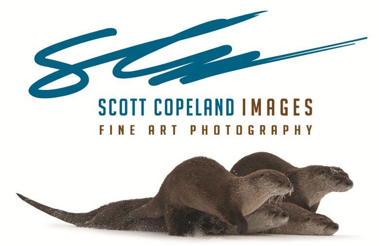Scott Copeland Images