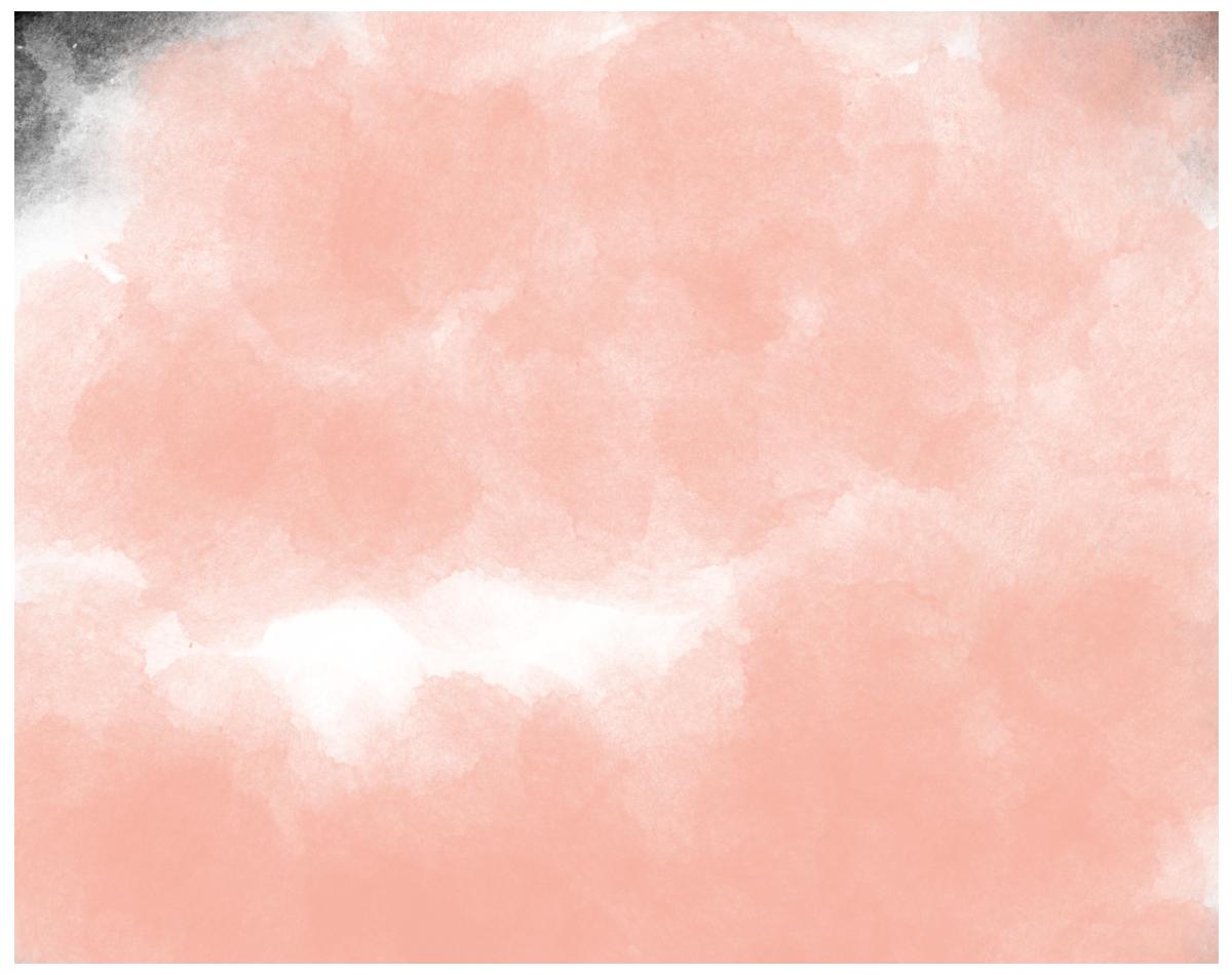 Wild Orchard Studios