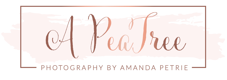 A PeaTree Photography: Syracuse, NY