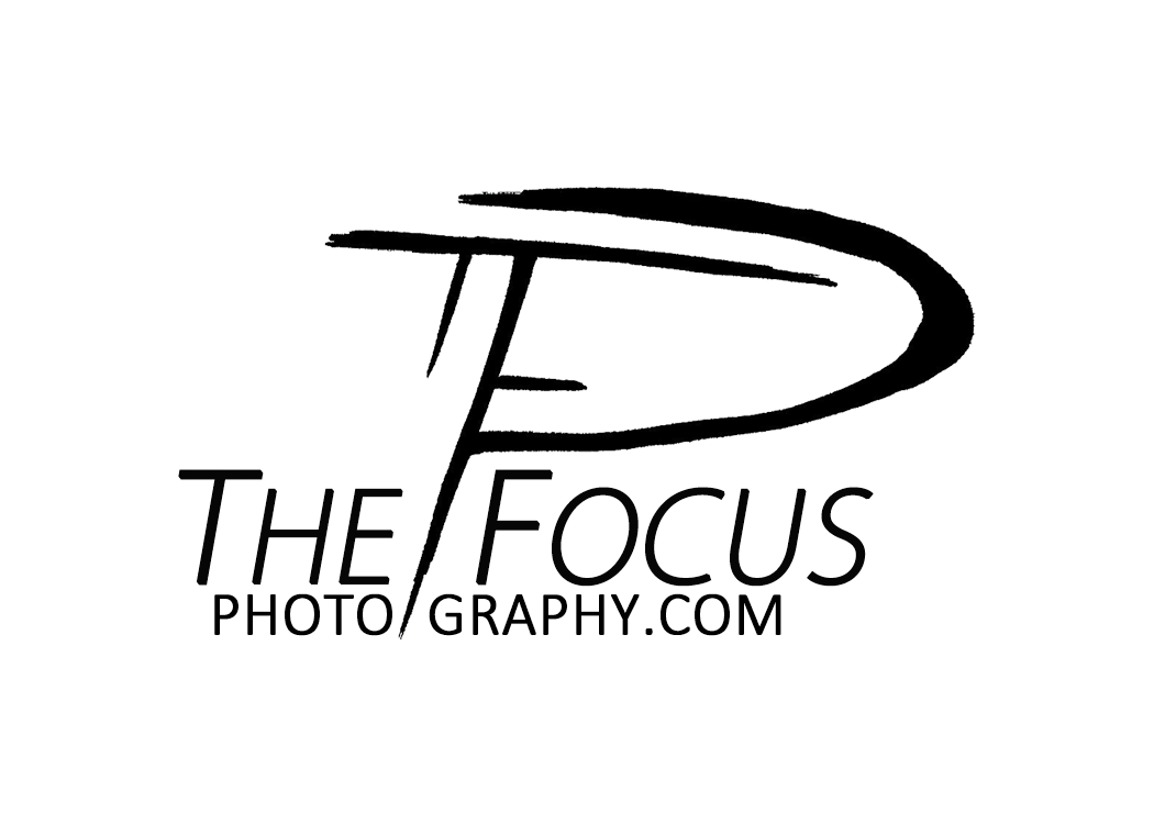 The Focus Photography
