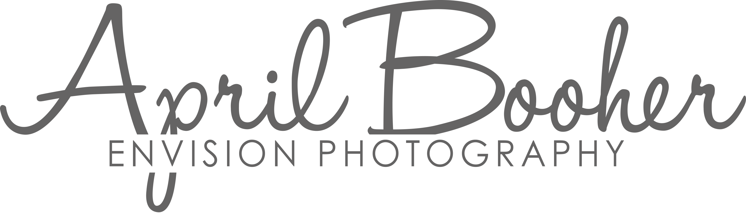 Envision Photography by April Booher