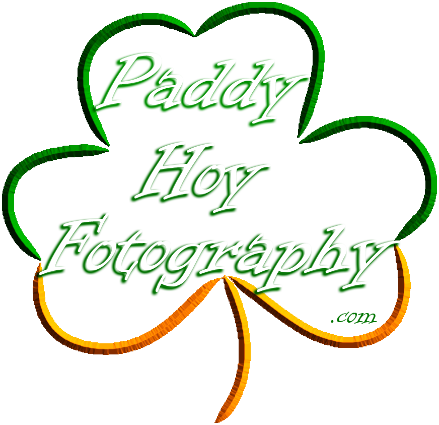 Paddy Hoy Fotography