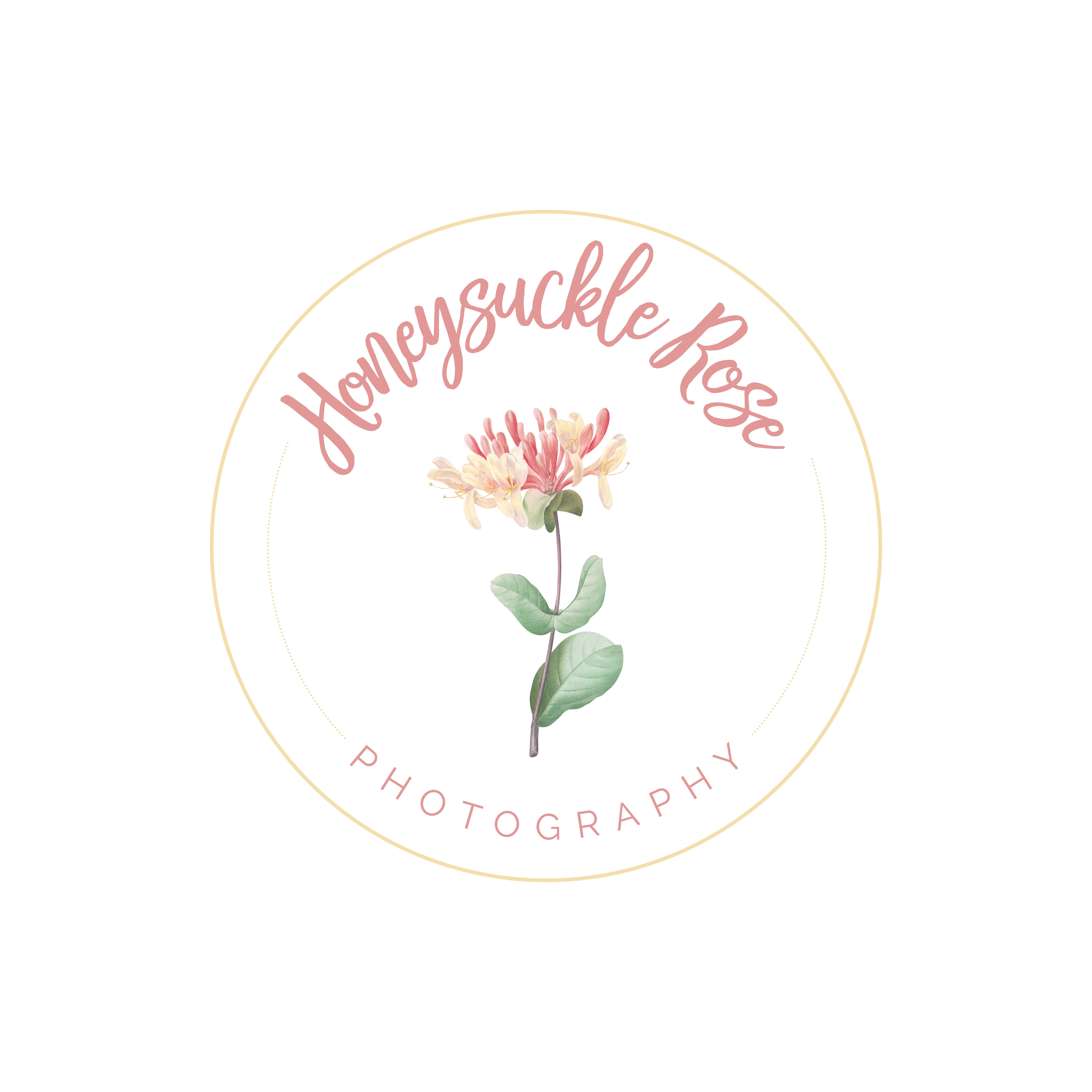 Honeysuckle Rose Photography