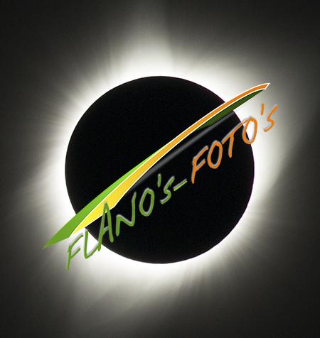 FLANO's-FOTO's