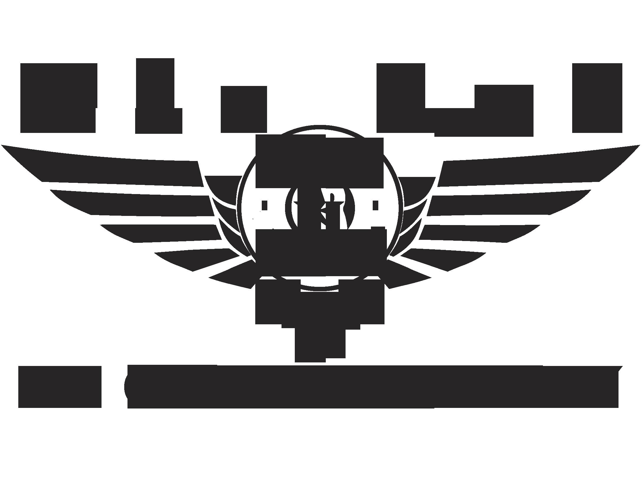 Dan Rod