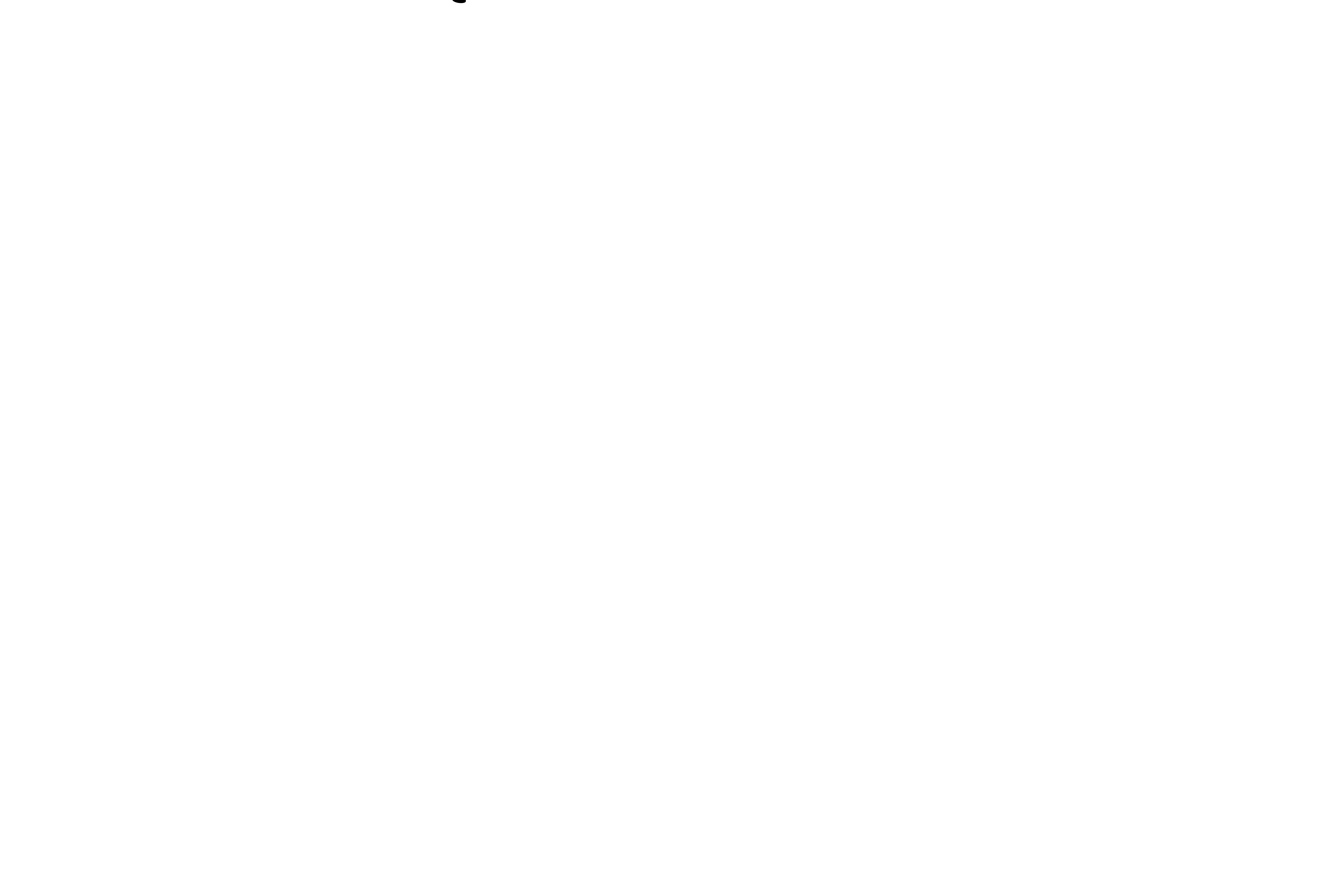 DL Action Sports Photography
