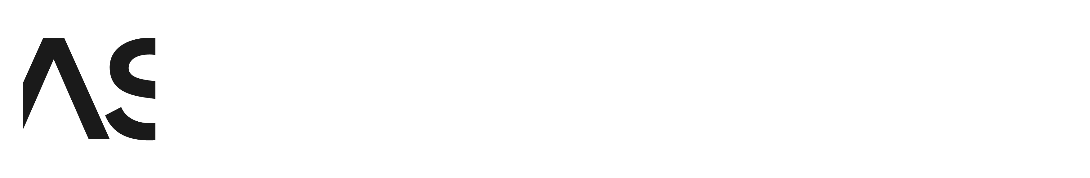 ARTKONTAKT Studio BAST