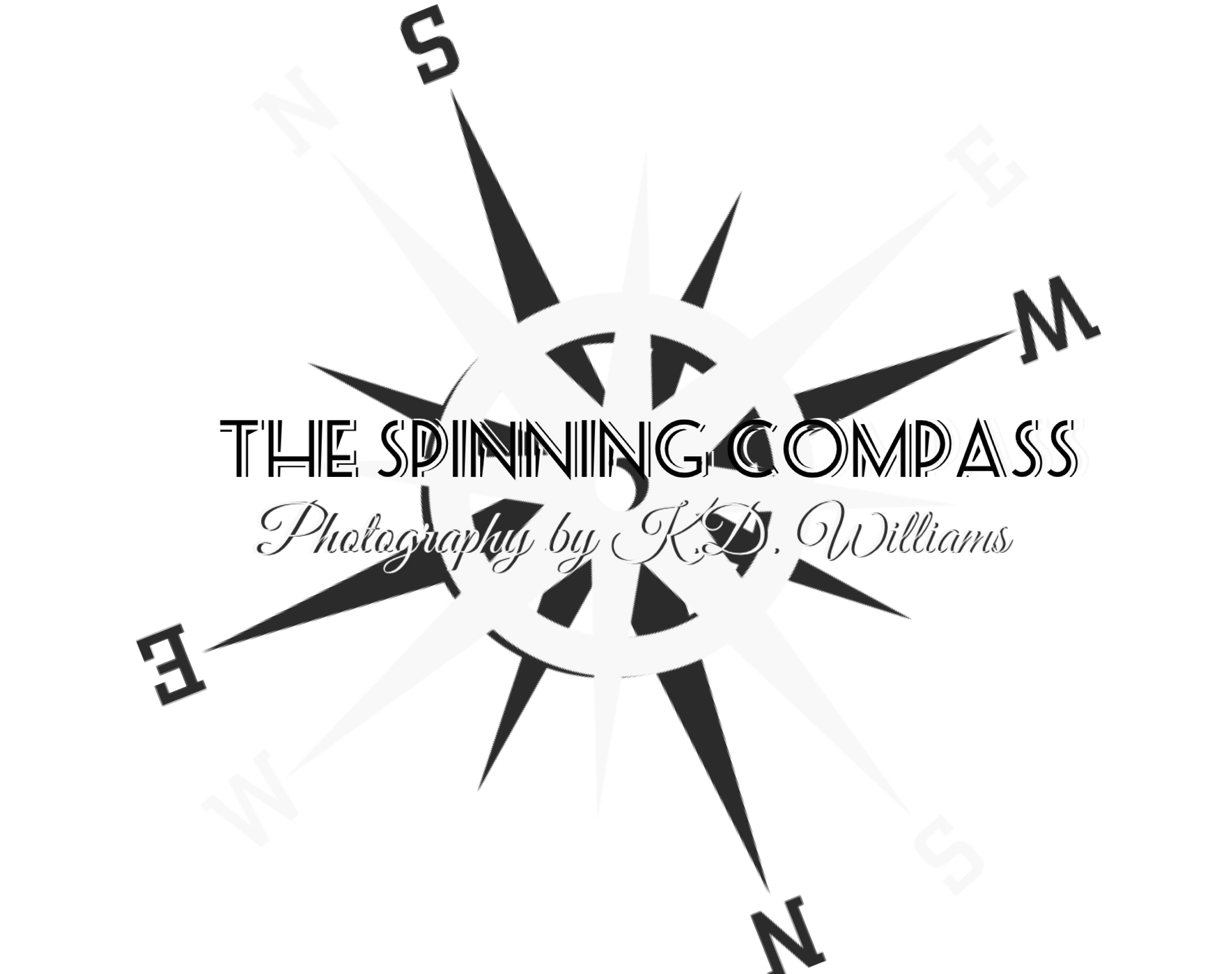 The Spinning Compass