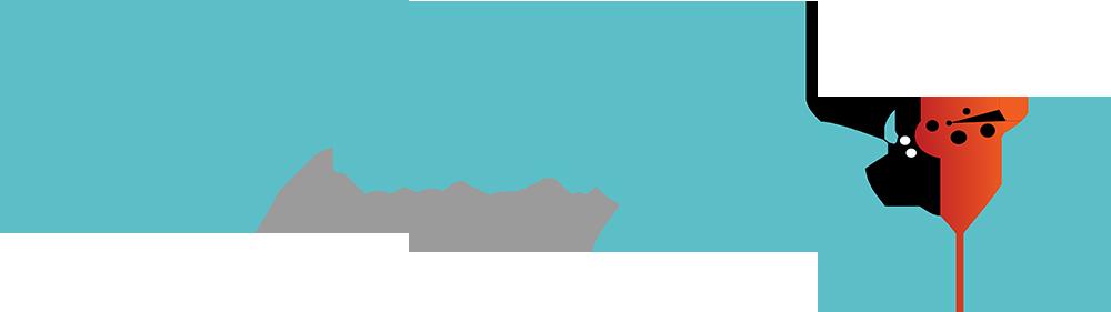 Lil' Bug Photography