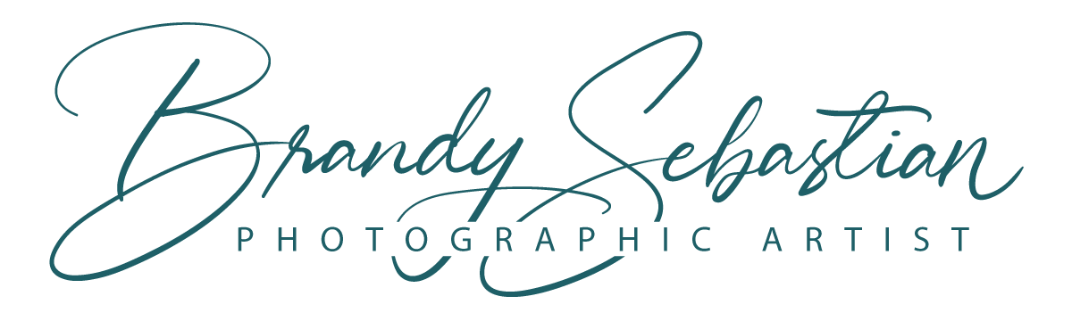 Brandy Sebastian