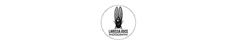 Larissa Joice Photography