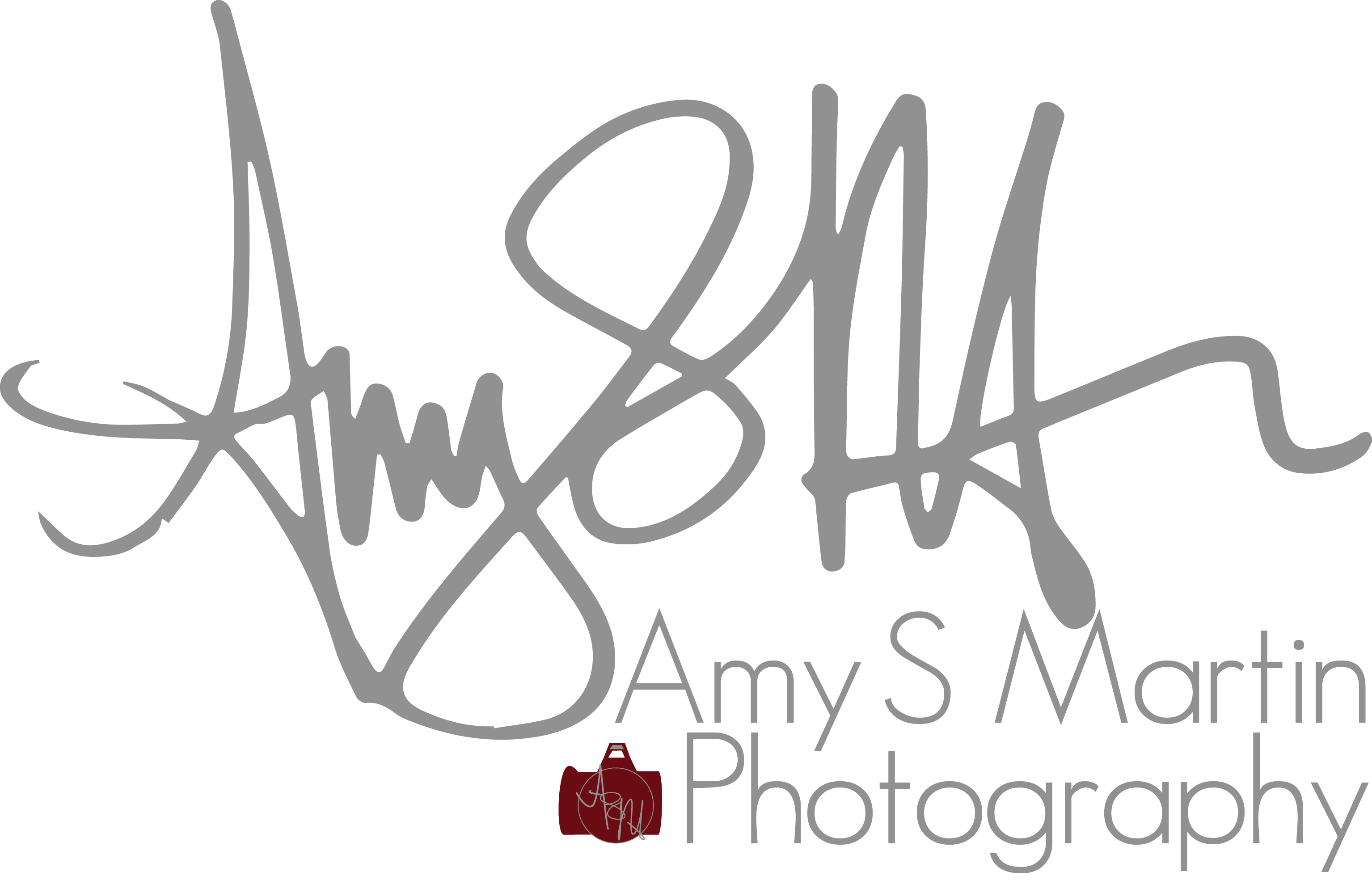 Amy S. Martin Photography